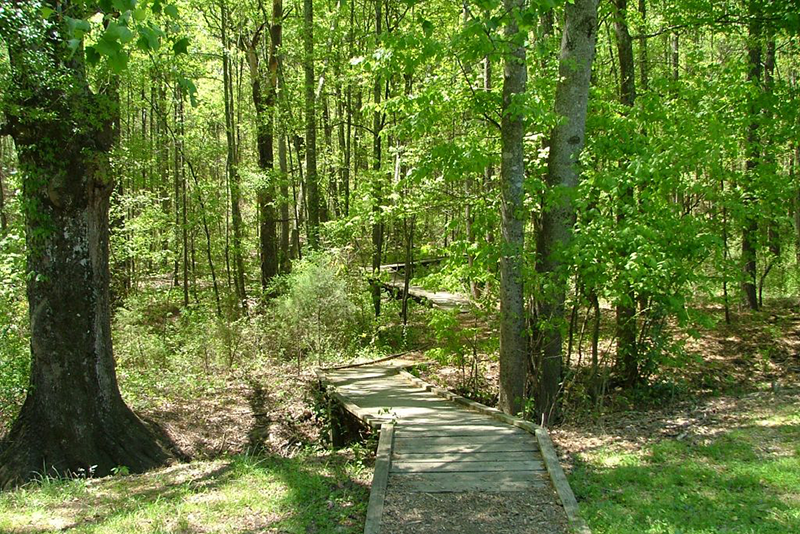 Clayton County Parks – It Starts in the Parks